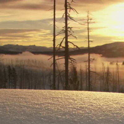 Christmas in Yellowstone | Nature | PBS